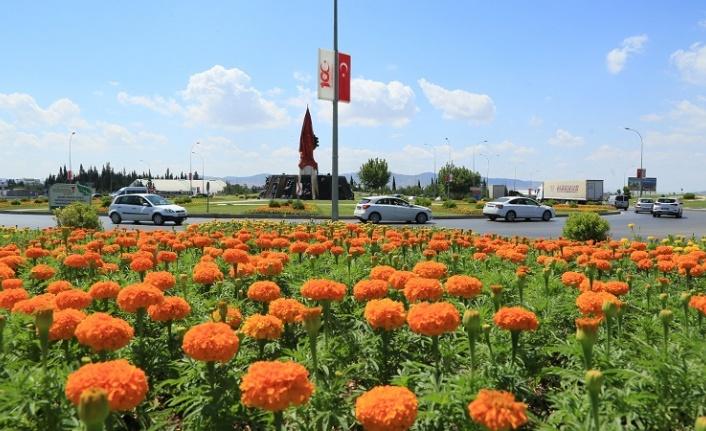 Büyükşehir'den Mevsimlik Çiçek Dikimi