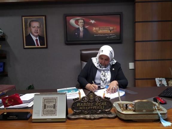 Öçal'dan 15 Temmuz Demokrasi ve Milli Birlik Günü mesajı