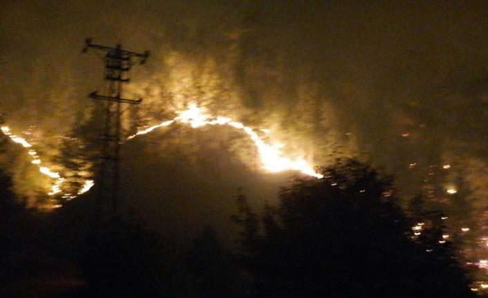 Kahramanmaraş'ta orman yangın