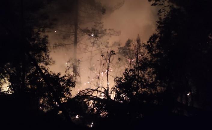 Kahramanmaraş'ta orman yangını kontrol altına alındı