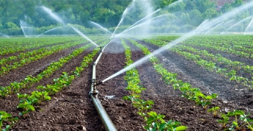 Tarım ve sulamaya 57,5 milyar lira kaynak