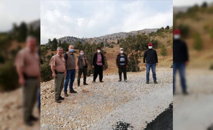 Kahramanmaraş'ta yaban koyunlarına GPS'li takip