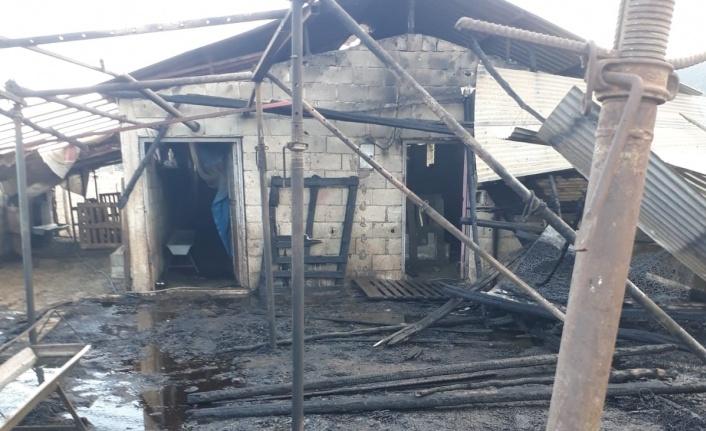 Kahramanmaraş'ta 200 dekar buğday tarlasıyla besi ahırı kül oldu