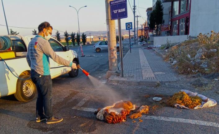 Büyükşehir'le Kirliliğe Geçit Yok