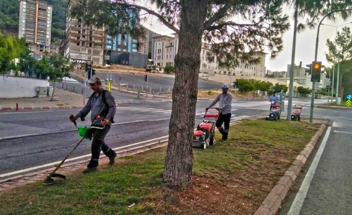 Büyükşehir'den Yeşil Alanlarda Bakım Çalışması
