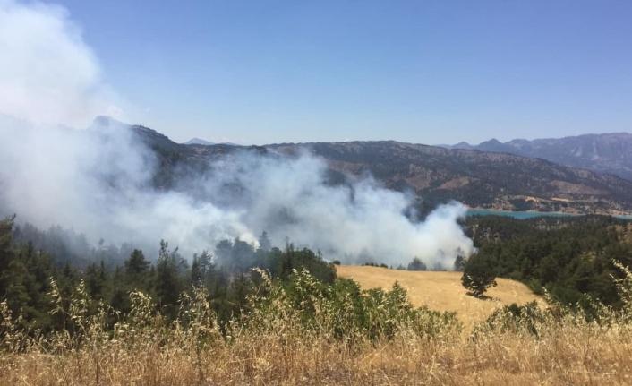Kahramanmaraş'ta ormanlık alanda çıkan yangın söndürüldü
