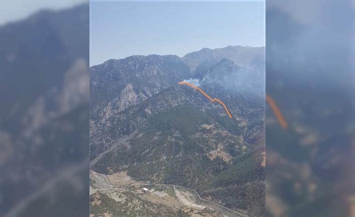 Kahramanmaraş'ta yıldırım düşmesi sonucu orman yangını çıktı