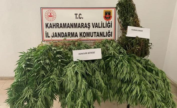 Kahramanmaraş'ta uyuşturucu operasyonu: 1 gözaltı