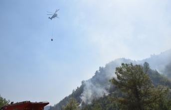 Kahramanmaraş'ta 9 ayda 72 orman yangını meydana geldi
