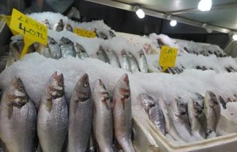 Kahramanmaraş'ta balık fiyatları cep yakıyor