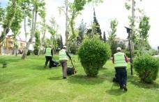 Park Ve Bahçeler Yaza Hazırlanıyor