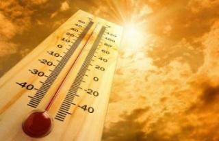 ABD'de sıcaklık rekoru kırıldı: 54,4 derece