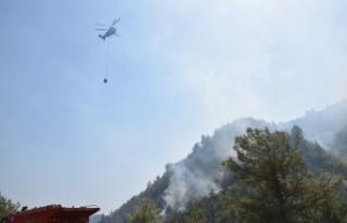 Kahramanmaraş'ta 9 ayda 72 orman yangını meydana...