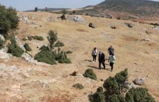 Pazarcık'ta kazı çalışması başlıyor