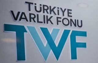 Türkiye Varlık Fonu'ndan THY açıklaması