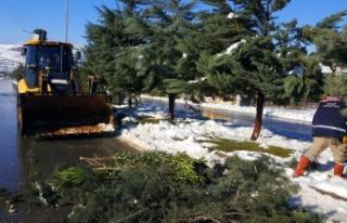 Kar Devirdi Büyükşehir Temizledi
