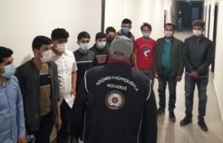 Kahramanmaraş'ta 13 kaçak göçmen yakalandı