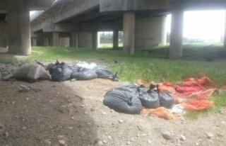 Kahramanmaraş'ta vatandaşlar çevre kirliliğini...