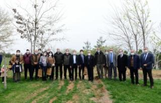 KSÜ, Dünya Ormancılık Haftası Kapsamımda Fidan...