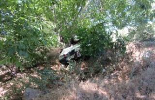 Kahramanmaraş'ta otomobilin kontrolünü kaybeden...