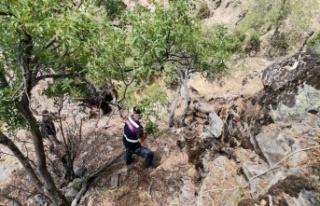 Kayalıklarda mahsur kalan keçileri jandarma ekipleri...
