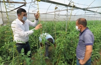 Sera çiftçilerine müjdeli haber Kahramanmaraş'tan geldi