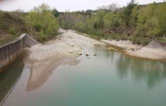 Kahramanmaraş'ta yüzlerce balık telef oldu